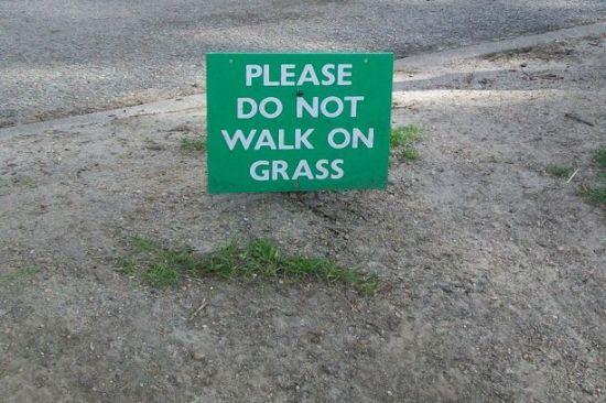 Hilarious Signs لافتات مضحكة