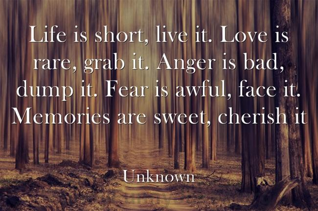 Life-is-short-live-it